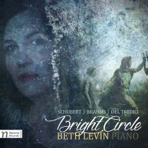 beth-levin_bright-circle_navona_2017_cover-art